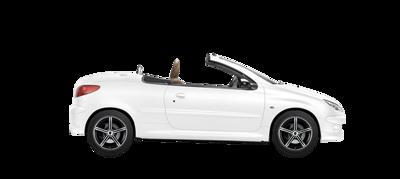 2001 Peugeot 206